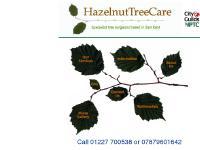 tree felling,arborist,tree surgery,tree surgeon Kent
