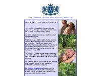 High Quality Homes Ltd Homepage