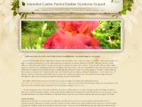Interstitial Cystitis Painful Bladder Syndrome Support - Home