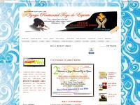 igrejapentecostalfogodoespirito.blogspot.com
