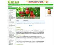 Vitamine B6, Vitamine C, Antioxydants, Anthocyanines