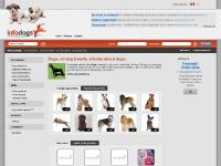 Dog breeds list, Detailed breeds list, Dog breeds photos, Dog breed groups