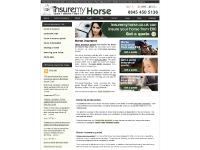 Horse insurance quotes to buy online - All types of equine insurance available for the UK