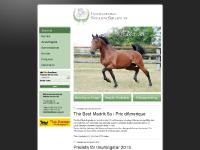 Biderman International Stallion Service AB