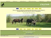 Joyton Stud. Welsh Section C Ponies of Cob type.
