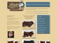 labattesimmentals.com Purebred Red Black Fleckvieh-influenced Fullblood Simmental genetics, Simmental breeders herd sires semen open bred heifers embryos