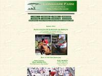 lionsharefarm.com horse sales, hunter jumper, equitation