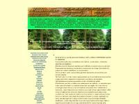 MADEIRITE RESINADO | CANTEIRO DE OBRAS