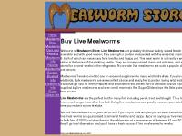 Live Mealworms at Mealworm Store