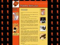 medupromotions - Tlokwe Sehume - Music Of The Mountains