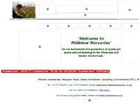 millviewnurseries.co.uk growers,nursery,wholesale