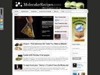 Molecular Gastronomy Recipes, Tips and Techniques | Molecular Recipes
