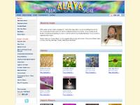 Meditation Music | Relaxation Music | New Age Music by Alaya