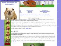 Dog Disease, Dog Breed Info, Dog Rawhide Bones Chews Treats, Dog Food Nutrition