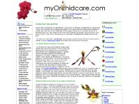 Orchid Care Tips and FAQ