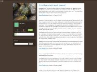 Neil Silva's blog