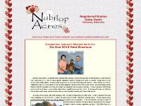 nubilopacres.com Dairy Goats, Herd Sires, Senior Does