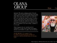 Olana Group Art Consulting Services