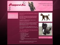 pamperedpetsredditch.co.uk pet groomer, grooming salon, dog grooming