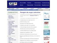 pesagemdecargas.com.br
