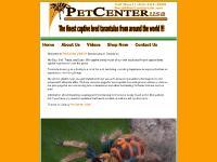 PetCenterUSA.net - Tarantulas for sale