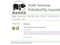 petpigs.com Home North American Potbellied Pig Association