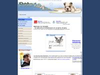 Welcome to Pets4SA for Pet Lovers, Pet Nutrition and Pet Health