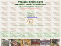 pheasantchicksfarm.com pheasants, chicks, eggs