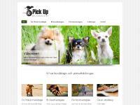 PickUp Hunddagis och Hundskola