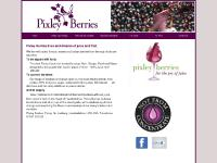 Pixley Berries | for the joy of juice