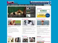 Desenhos, Novelas/cinema, Famosos com seus cães, Kennels Clubes