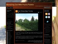 Branching Out With Prairie Palette