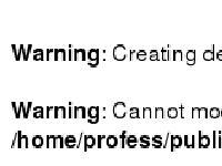 professional-blogging.com