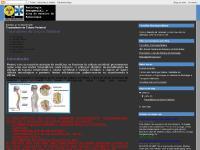 radioemergencial.blogspot.com Traumatismo de Coluna Vertebral, 22:16, 23:34