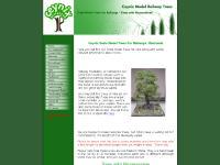 Ceynix Scale Model Railway Trees