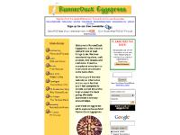 RunnerDuck Eggspress, a great resource for woodworking and craft projects.