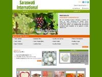 saraswatiinternational.com fresh fruits, fresh vegetables, indian fresh fruits