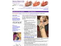 Mehndi, the art of henna tattoos made easy for everyone