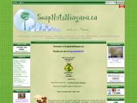 SoapNutsNiagara!, Check out our catalog of organic soaps and start living clean.