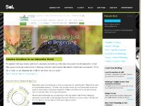 careers, clients, Synq Solutions, Zuku Review