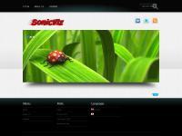 sonicviz.com « sonicviz.com