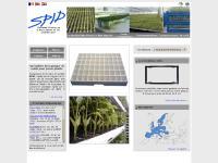 Plaques alvéolées de semences, semis en plastique rigide pour jeunes plants de