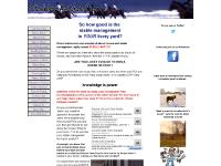 Stable Management - Equine Stables - All About Horses | Stable Antics