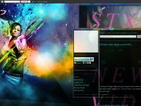 stx89.blogspot.com X-Factor Cher Lloyd covers Pink, 0 Comments, Cher Lloyd