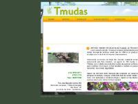 Reflorestamento - TONINHO MUDAS - Jardinagem - Mudas - Reflorestamento - Jardinagem