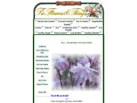 tsflowers.com perennial seeds, annual seeds, vegetable seeds
