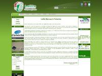 Leitte Marcas & Patentes V3 (beta) - Soluções sem Fronteiras