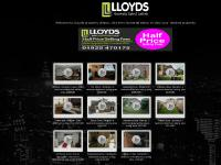 Lloyds estate agents,  Warrinton, Cheshire, Warr