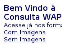 wapvv.com.br