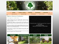 wychwood-treesurgeons.co.uk Tree Surgeons London, tree surgeon London, tree surgery London